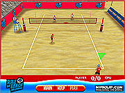 Click to Play Rule the Beach Volleyball