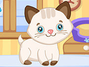 Click to Play Cutie Pet Care 2