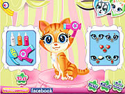 Click to Play Pets Beauty Salon